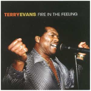 Fire in the Feeling, by Terry Evans